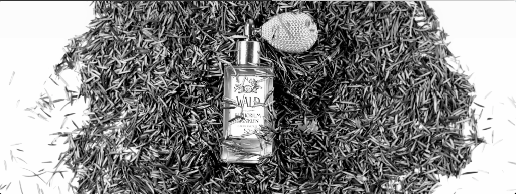 wald_pine_sm
