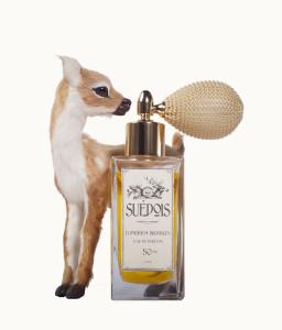 Suedois_Deer_1