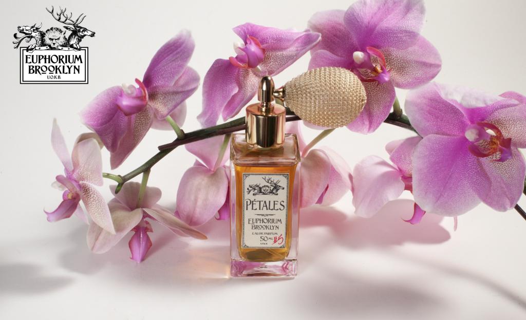 petales_orchidsm