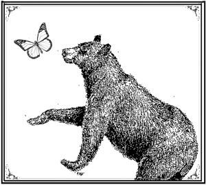 butterfly_bear1